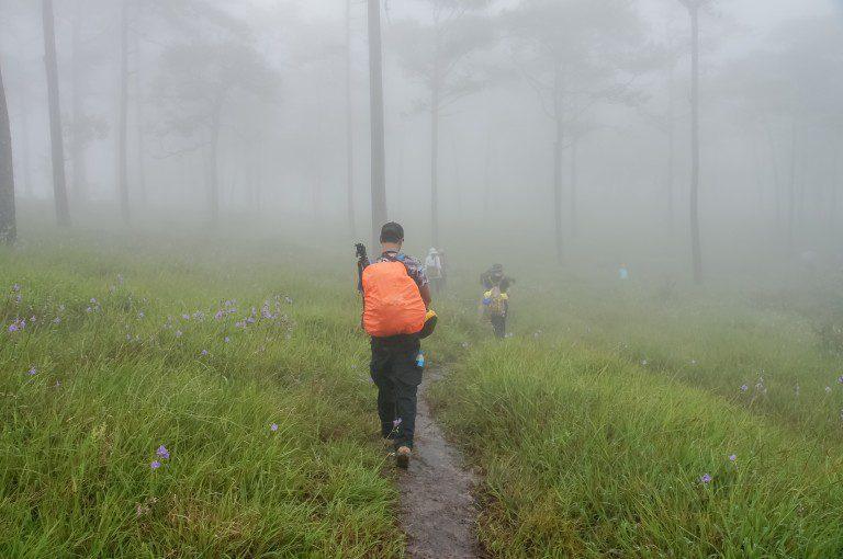 travel in the rainy season