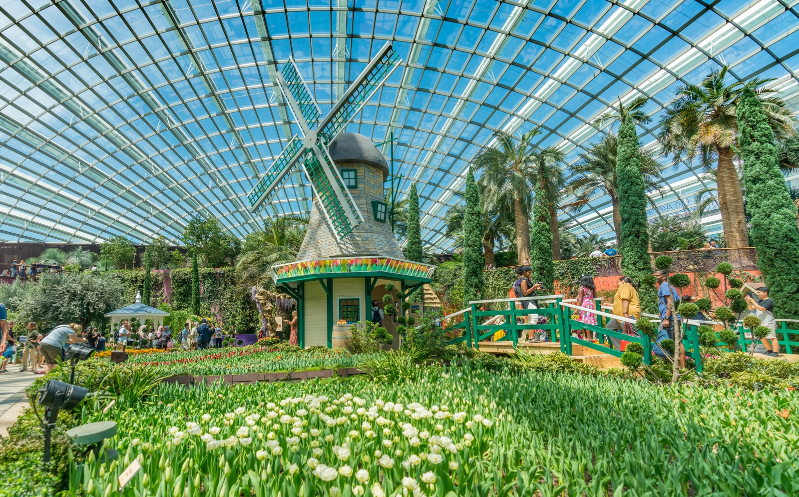 Flower Dome (4)