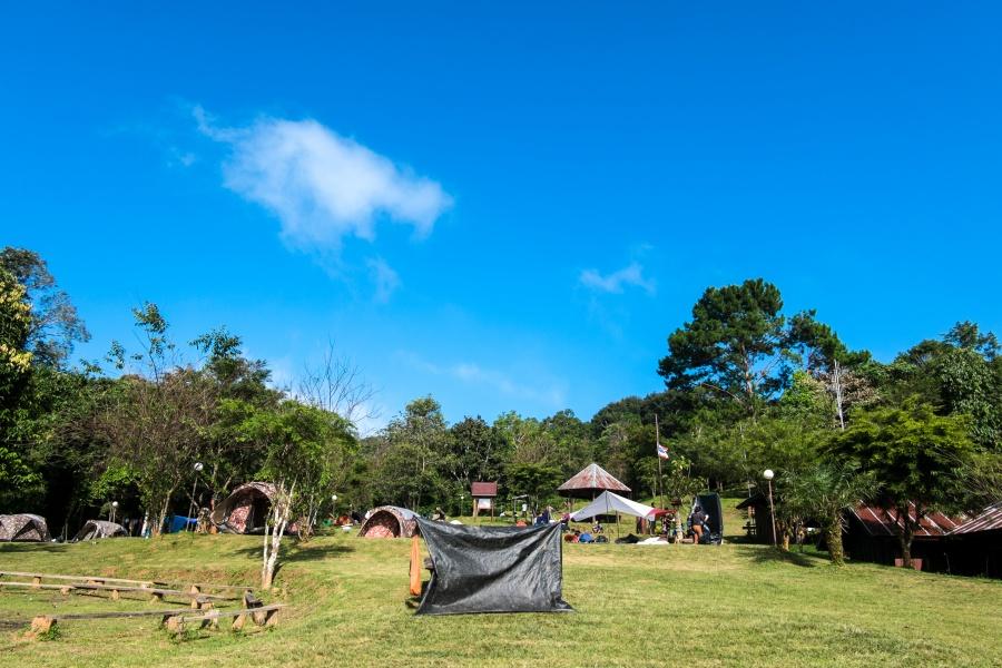 เกาะเหลายา